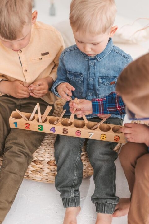 Wooden Counting sticks Sorting toy